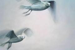 Gull-I