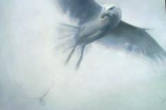 Gull-V