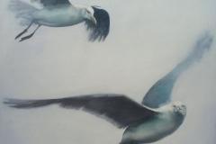 Gulls-III